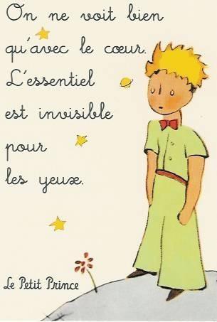 le-petit-prince-222342