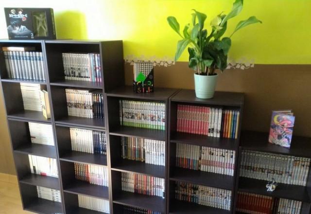 Bibliothèque Hillja 2